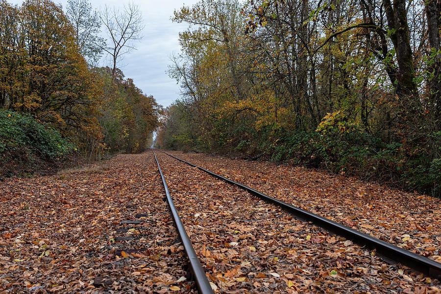 Railroad Fall by Steven Clark