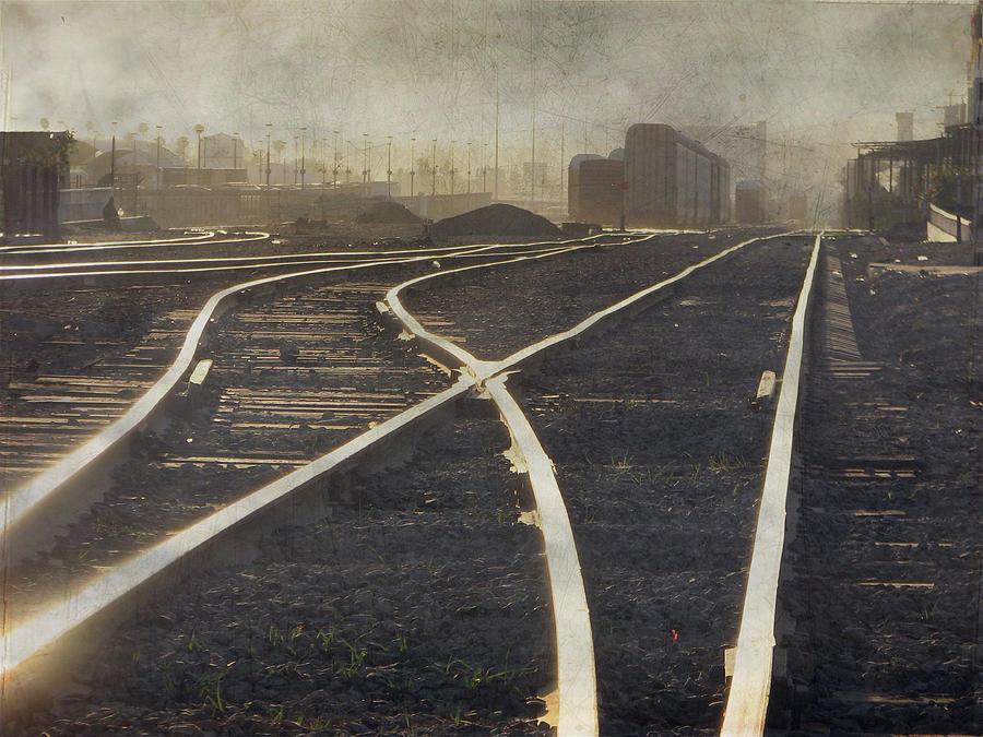 Railroad Tracks Photograph by Saul Landell / Mex