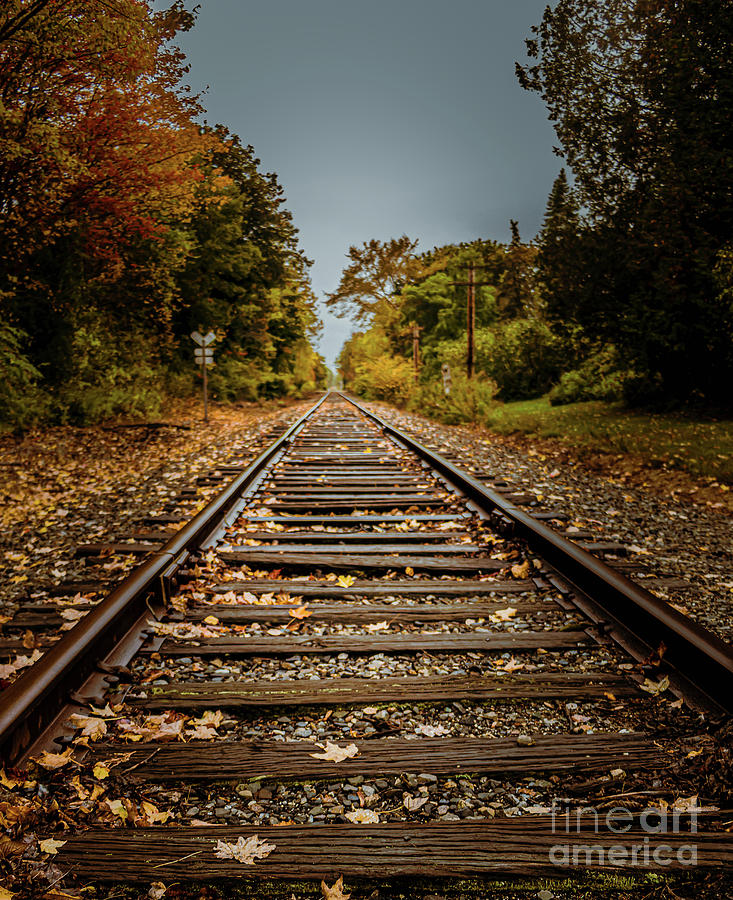 Railroad Tracks Yarmouth by Elizabeth Dow