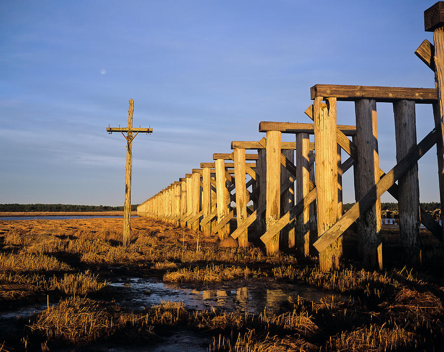 Railroad Trestle by Robert Potts