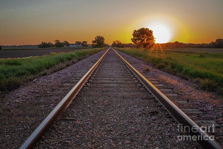 Rails East by Michael Greiner
