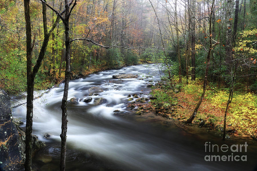 Rain and River 2 by Rick Lipscomb