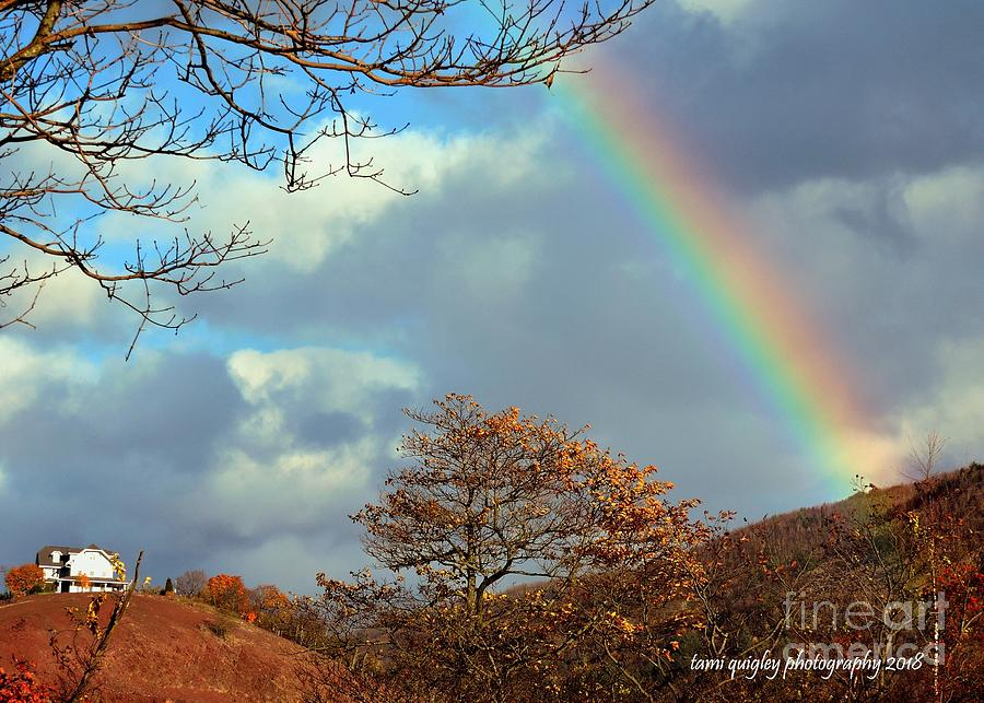 Rainbow Over The Ridge  by Tami Quigley