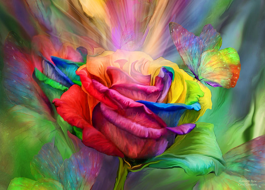 Rainbow Rose by Carol Cavalaris