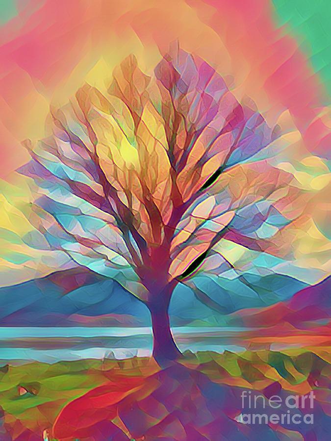 Rainbow Tree Photograph