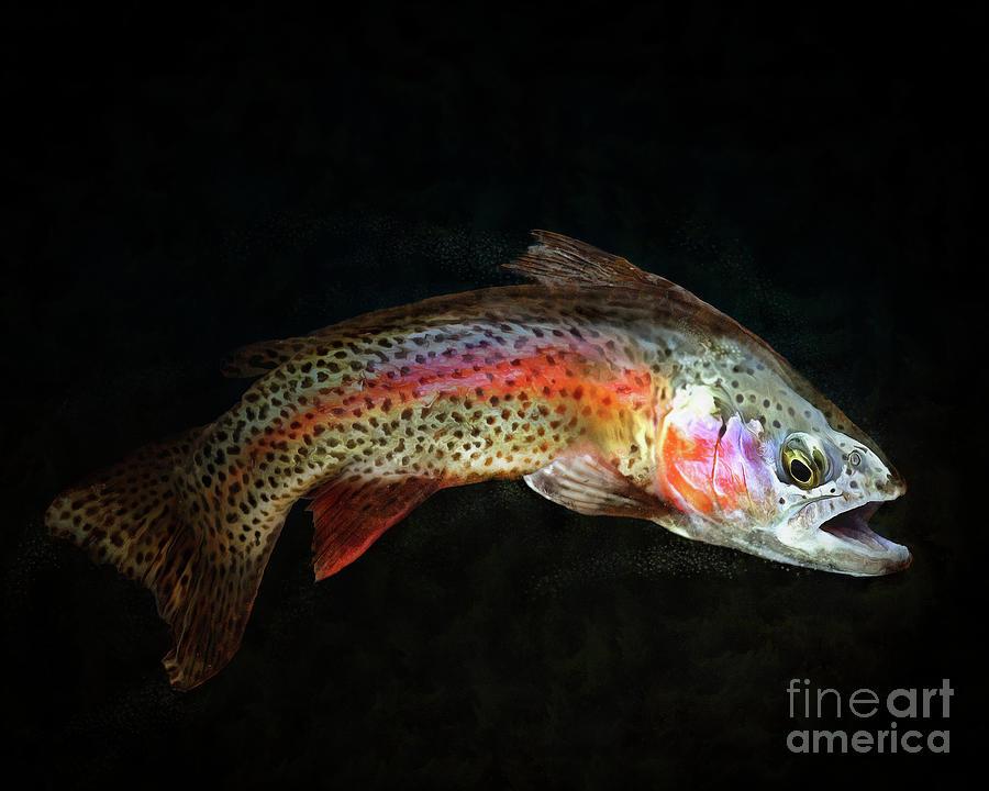 Rainbow Trout Art Digital Art