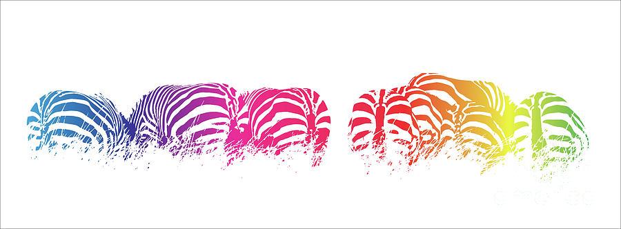 Zebra Photograph - Rainbow Zebras by Jane Rix