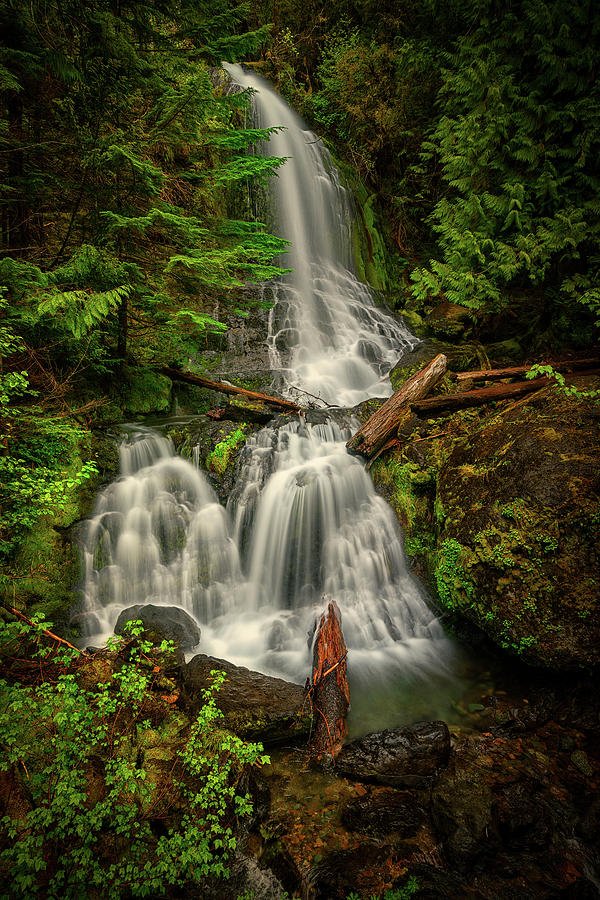 Rainier Falls Creek Falls by Dan Mihai