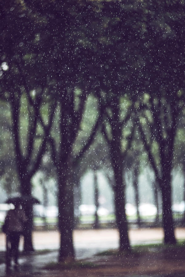 Raining in Paris, France by Eduardo Huelin