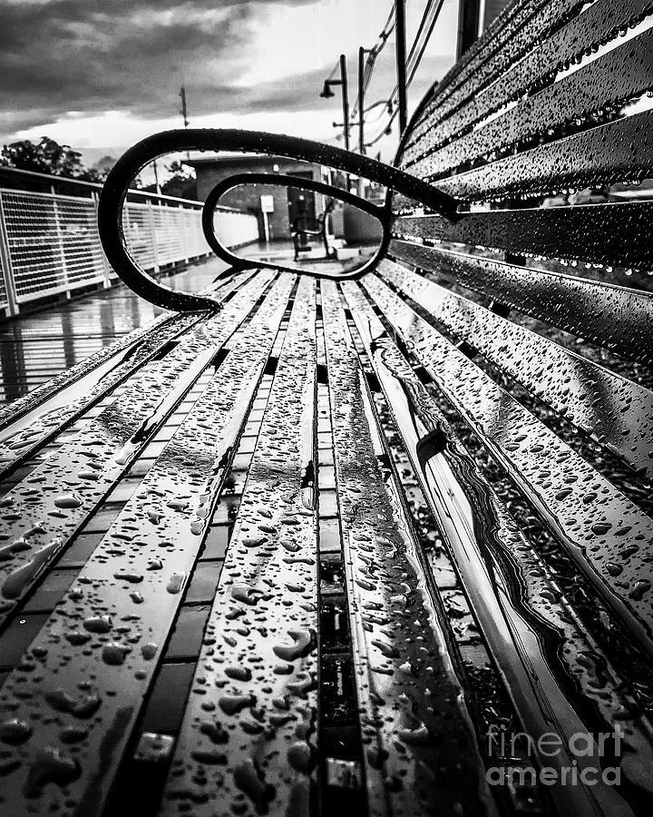 Rainy Days Bench Photograph by JMerrickMedia