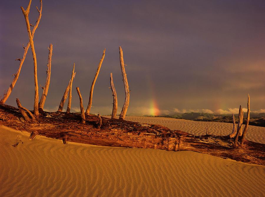 Rainy Day Dunes by Robert Potts