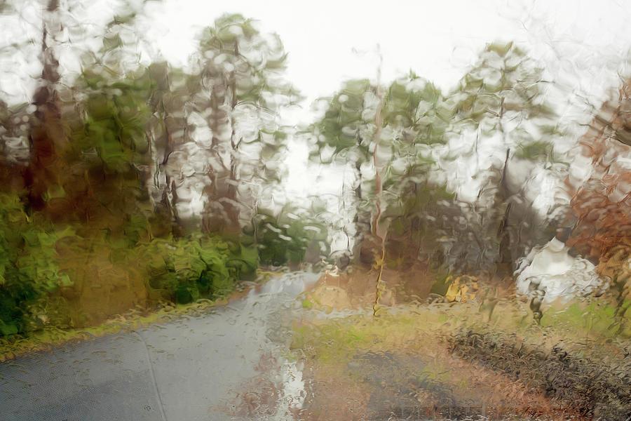 Rainy Day by Kolter Gunn
