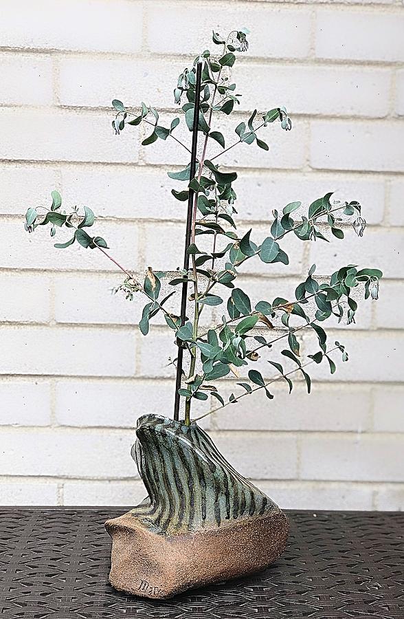 Raku and Living Eucalyptus by Mario MJ Perron