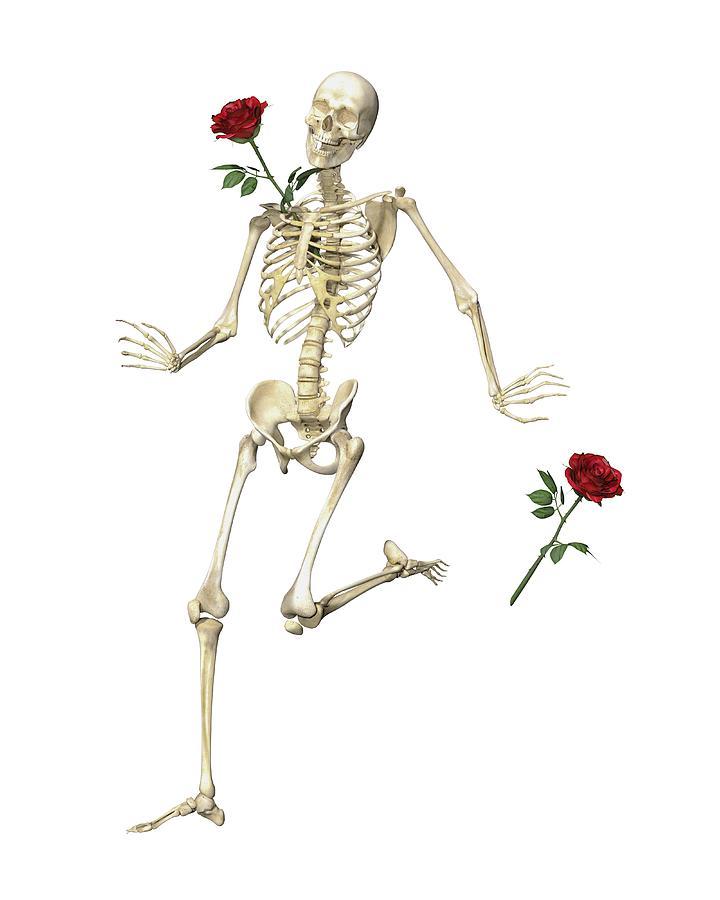 Human Digital Art - Rambling Rose Running Skeleton by Betsy Knapp