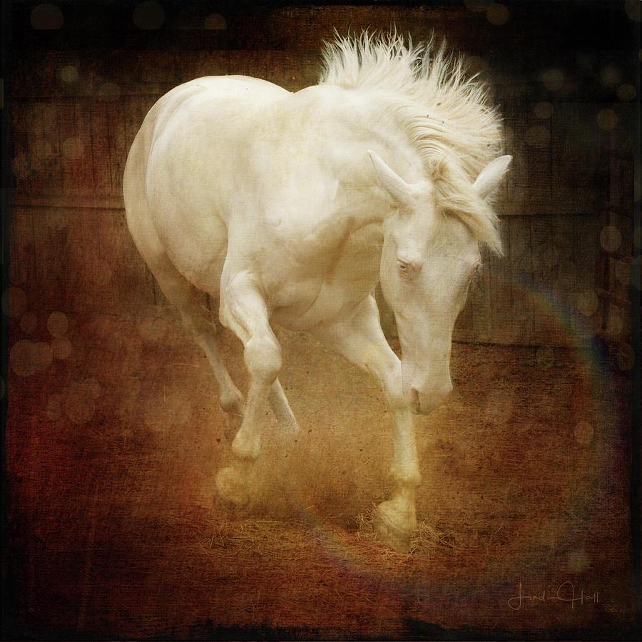 Horse Digital Art - Rambunctious by Linda Lee Hall