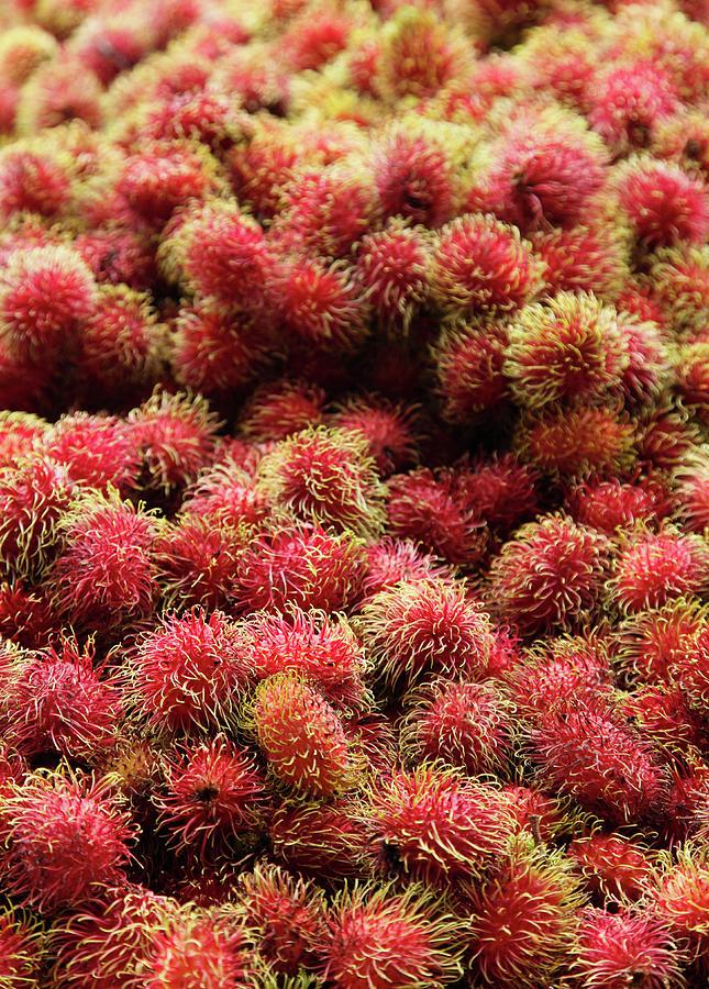 Rambutan Fruit In Market Photograph by Paul Taylor