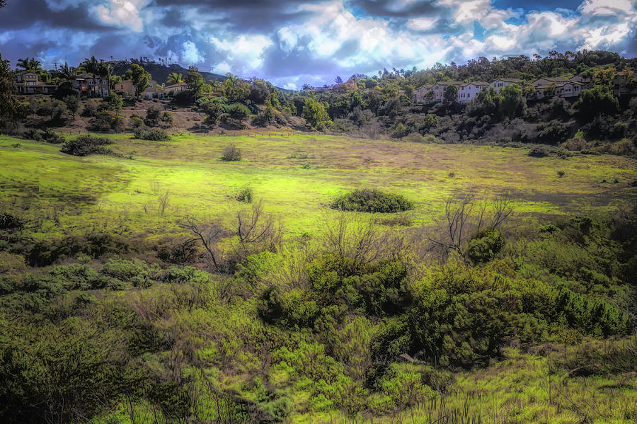 Rancho Carrillo  by Alison Frank