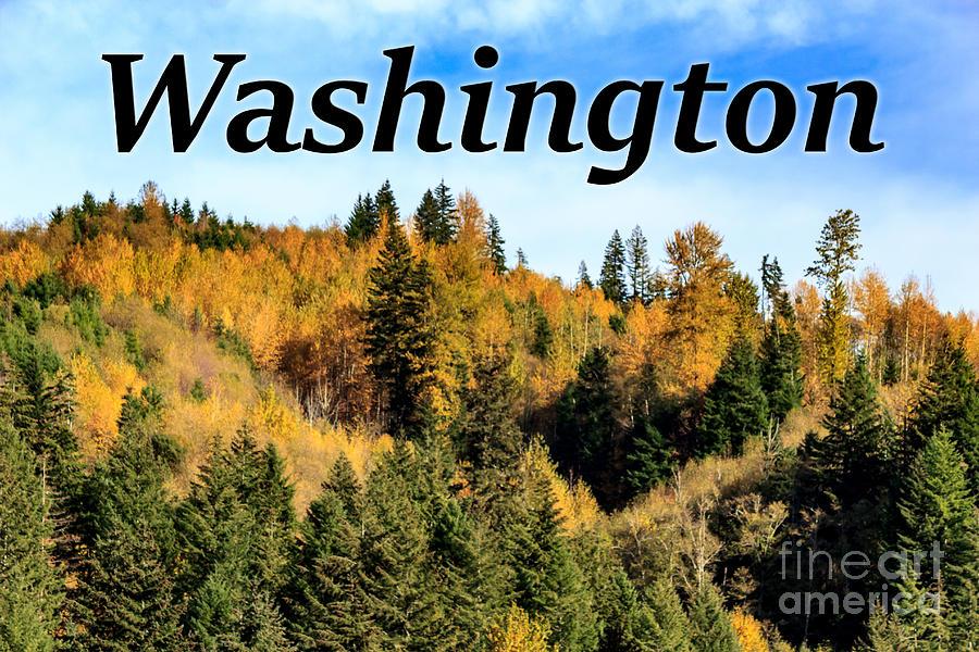 Randle Photograph - Randle Washington in Fall 02 by G Matthew Laughton