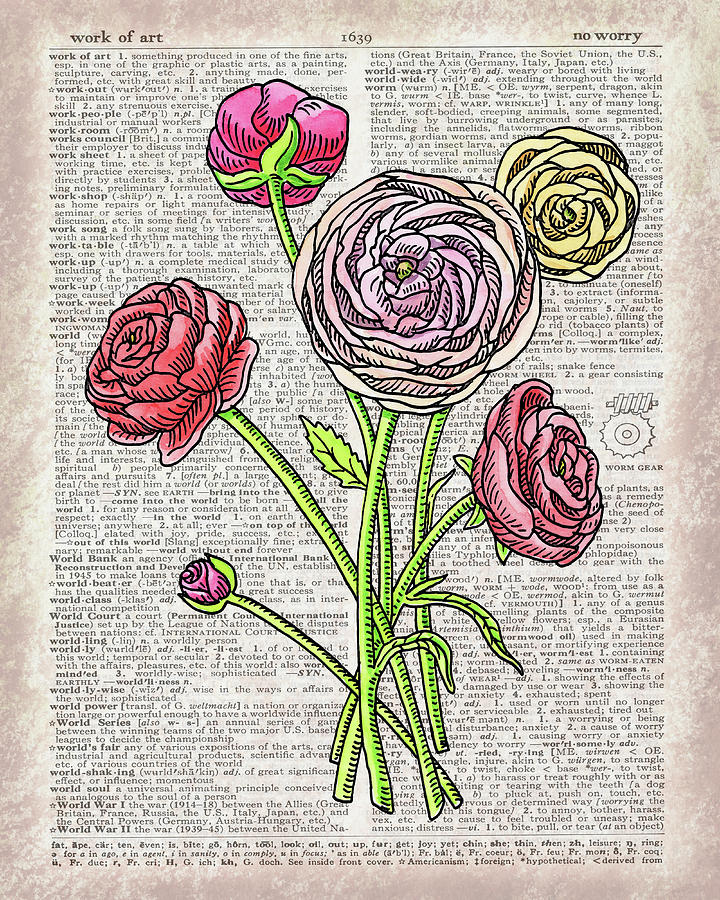 Dictionary Painting - Ranunculus Dictionary Page Watercolor Art  by Irina Sztukowski