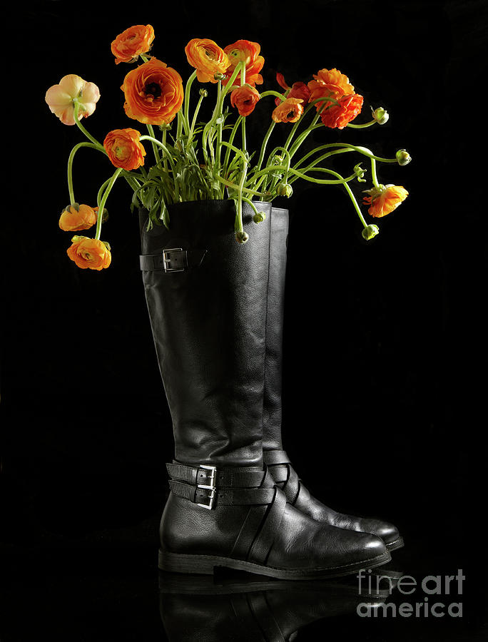 Ranunculus Flowers In Leather Boots Photograph by Shana Novak