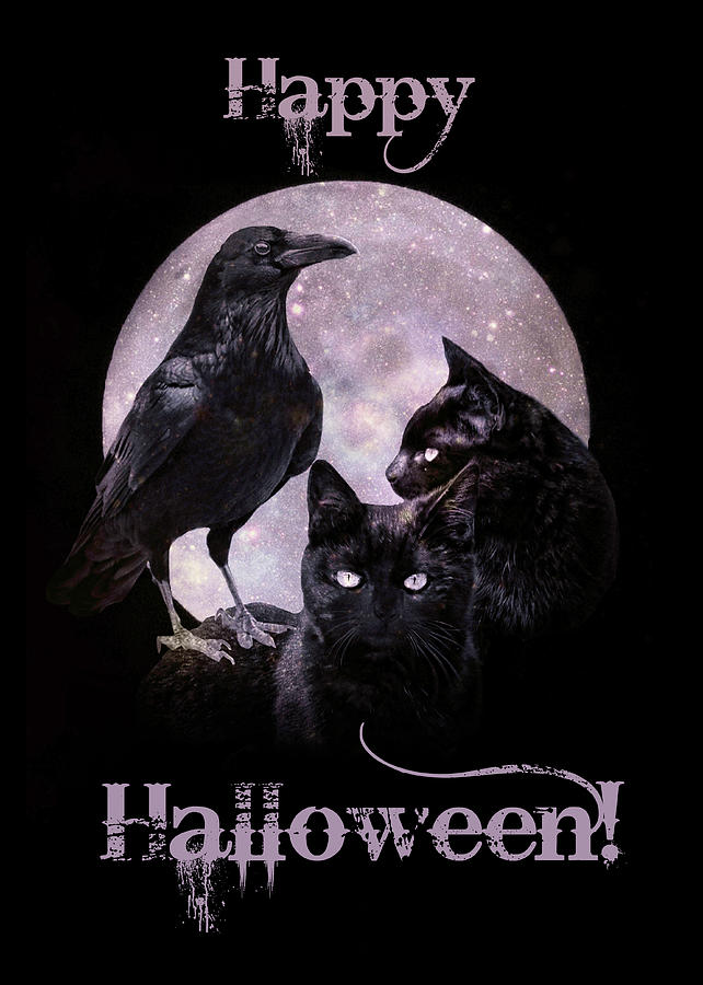 https://images.fineartamerica.com/images/artworkimages/mediumlarge/2/raven-and-black-cats-happy-halloween-black-and-purple-stephanie-laird.jpg