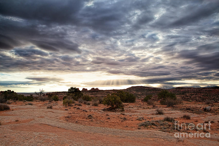 Rays of Morning by Jim Garrison
