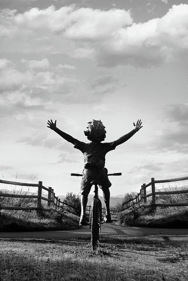 Black And White Photograph - Reach High by Dana Klein