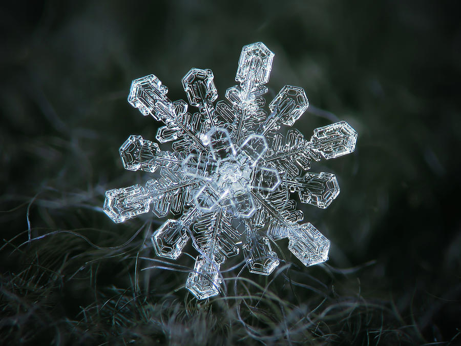 Real snowflake - 04-Feb-2018 - 1 by Alexey Kljatov