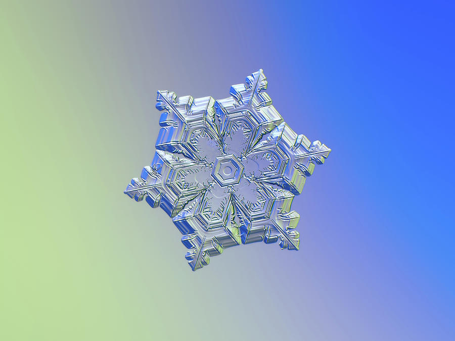 Real Snowflake - 05-feb-2018 - 12 Alt Photograph
