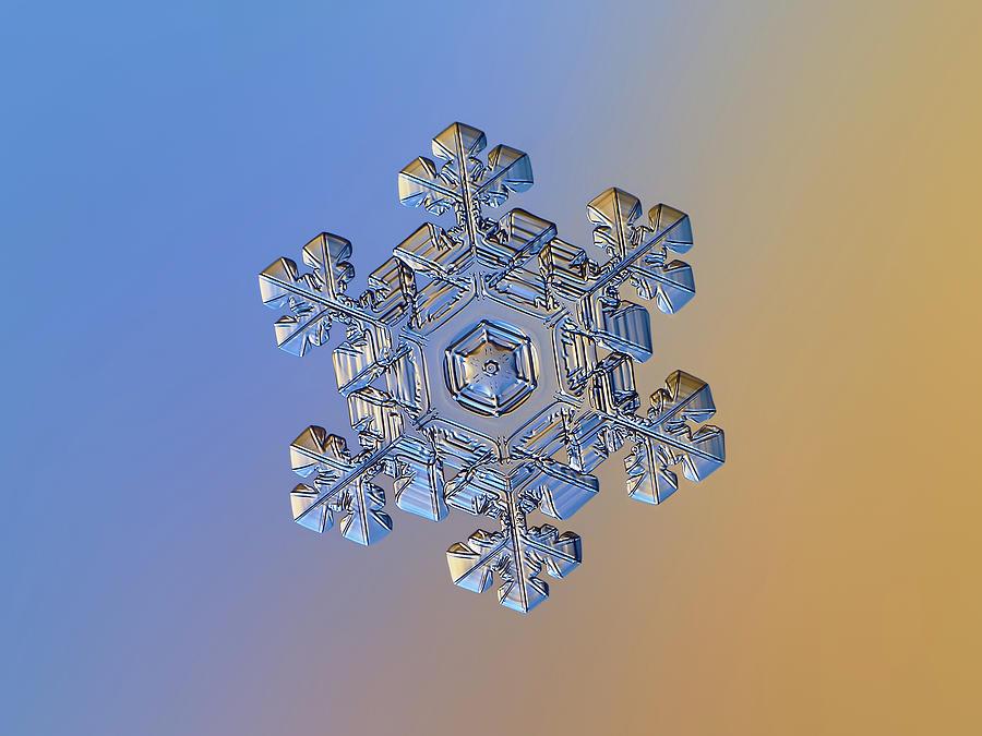 Real Snowflake - 05-feb-2018 - 13 Alt Photograph