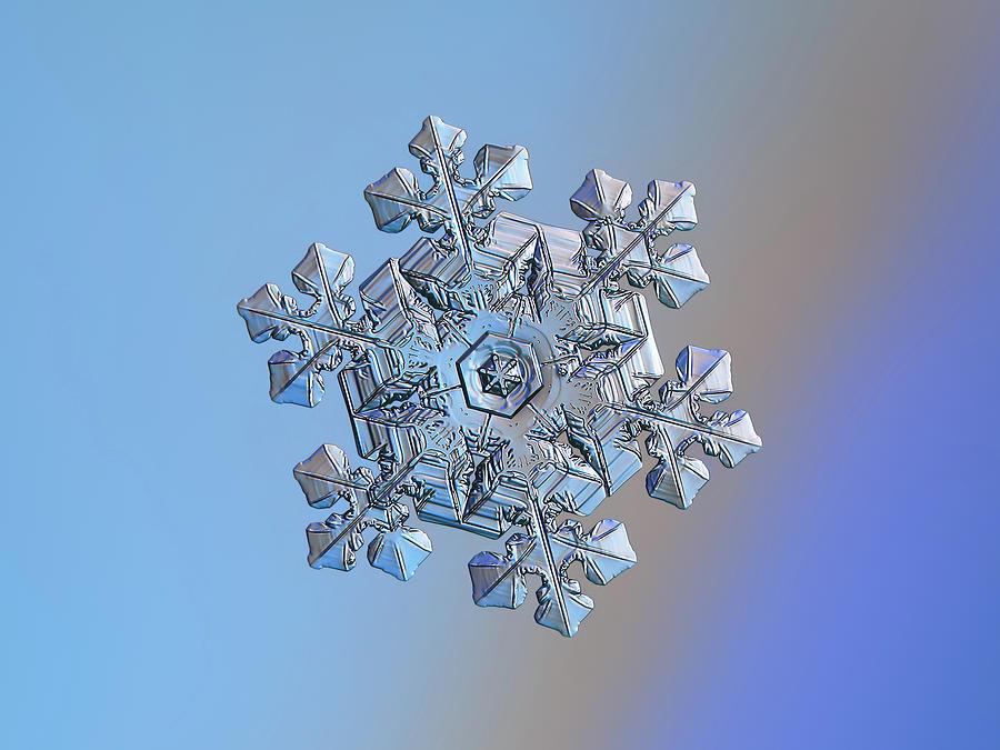 Real Snowflake - 05-feb-2018 - 14 Photograph