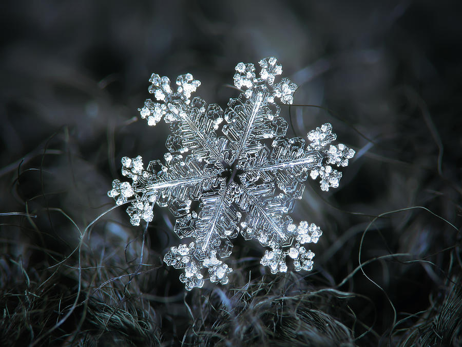 Real snowflake - 26-Dec-2018 - 1 by Alexey Kljatov
