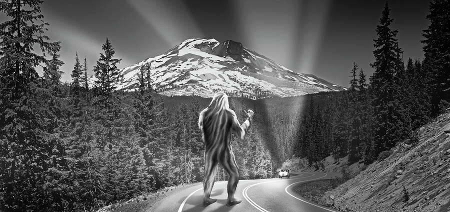 Rear View Of A Sasquatch Hitchhiking by Panoramic Images