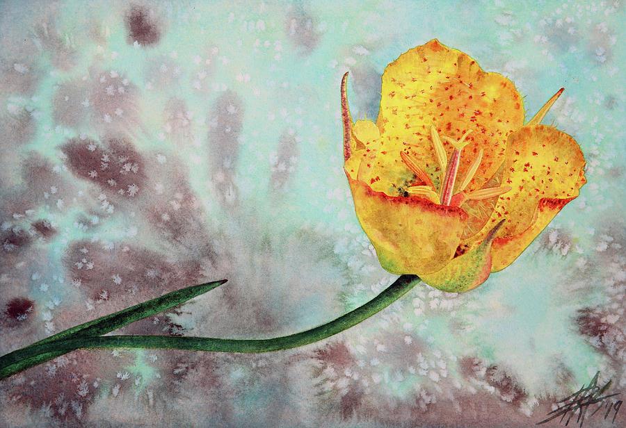 Reclining Mariposa Lily by Robin Street-Morris