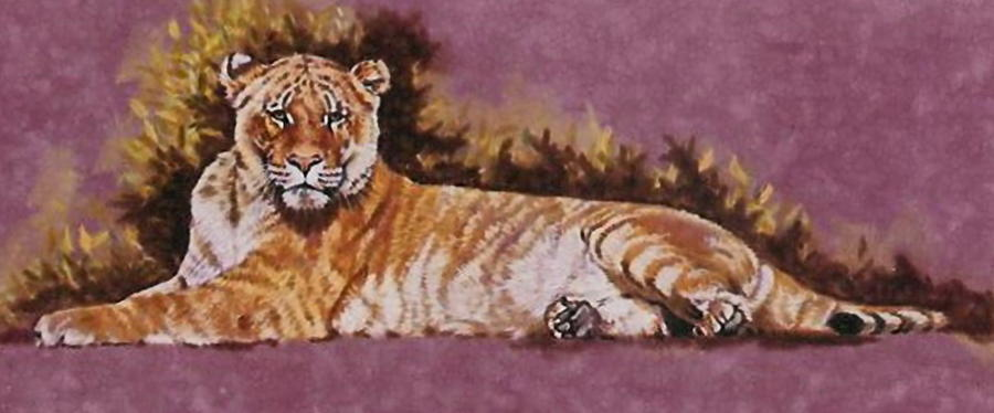 Reclining Sophie by Barbara Keith
