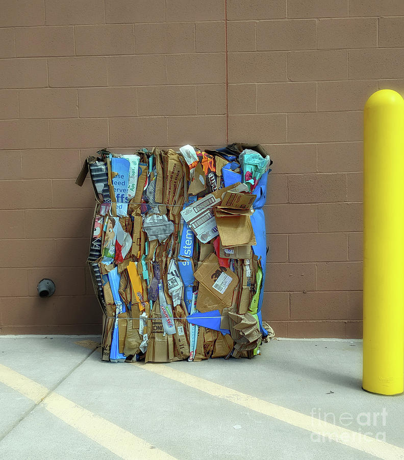 Recycle Photograph - Recycled Art  by Steven Digman