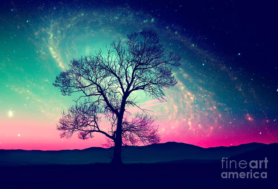 Magic Photograph - Red Alien Landscape With Alone Tree by Ssokolov