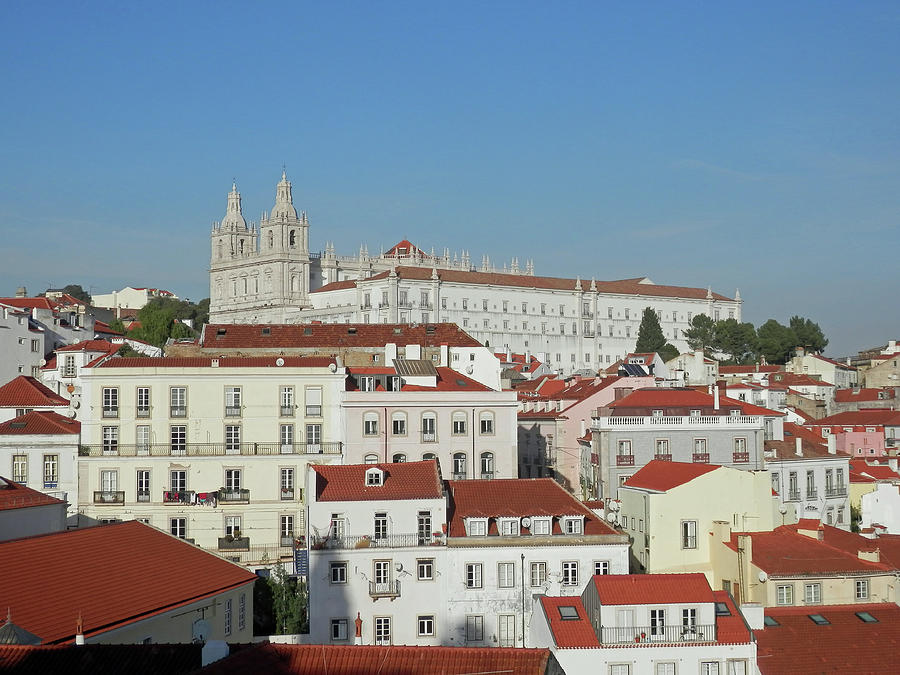 Red and White in Lisbon by Pema Hou