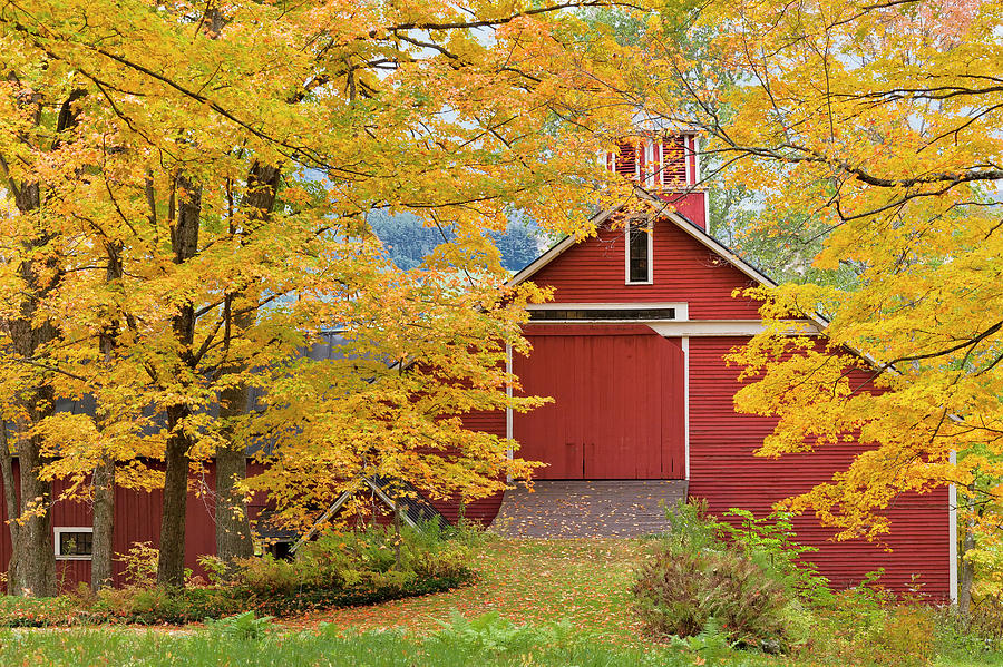Red Barn Fall Scenic Photograph by Alan L Graham