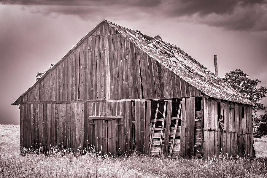 Barn Photograph - Red Barn In Monochrome by Randy Bayne