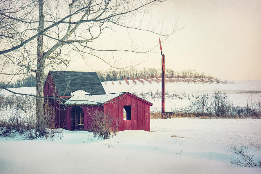 Red Barn in Snow - Farmhouse Art by Joann Vitali
