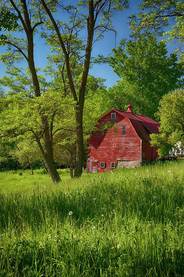 Red Barn on Vermont Farm by Joann Vitali