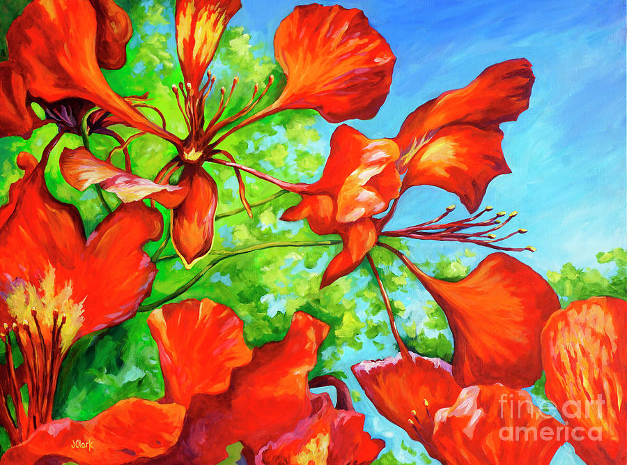 Poinciana Painting - Red Bracts On A Royal Poinciana by John Clark