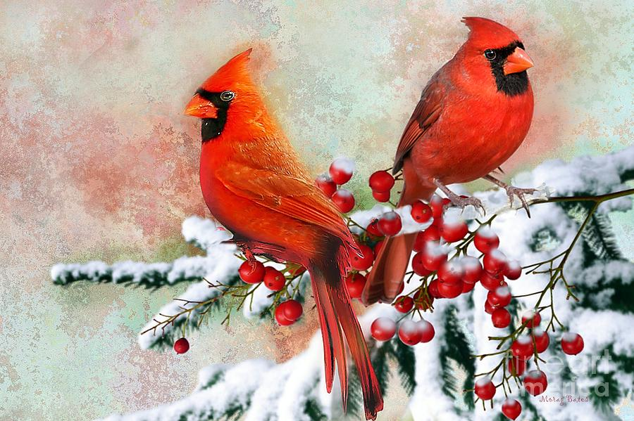 Red Cardinals by Morag Bates