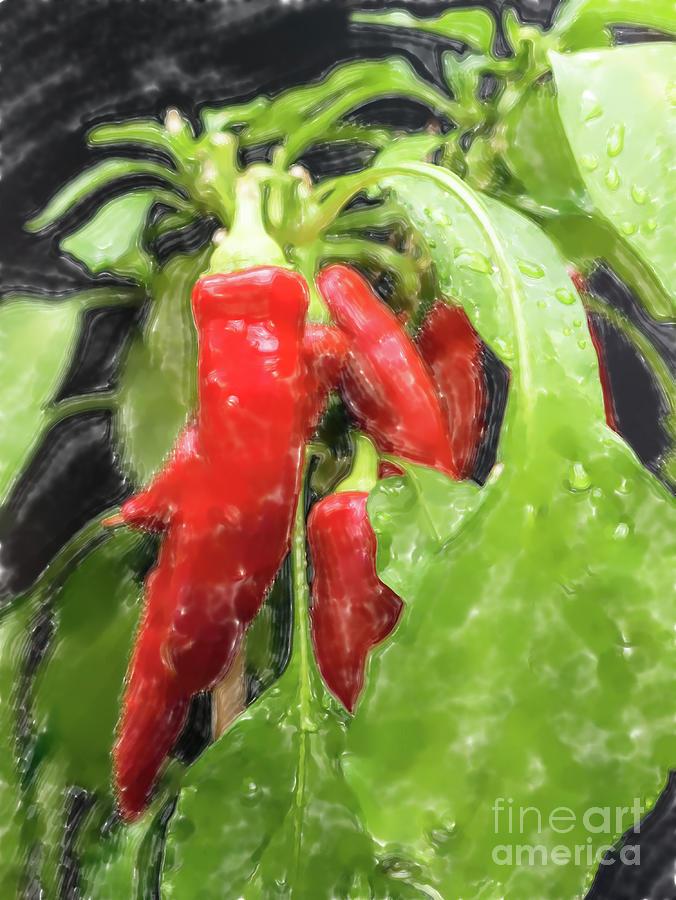 Red Chillies Digital Art