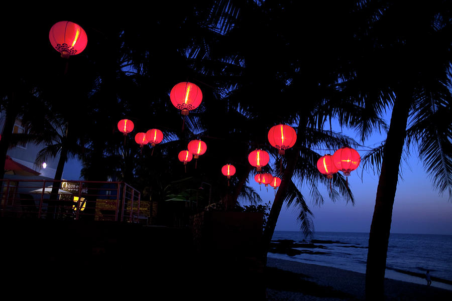 Red Chinese Lanterns Hang From Palm Photograph by Dennis Drenner