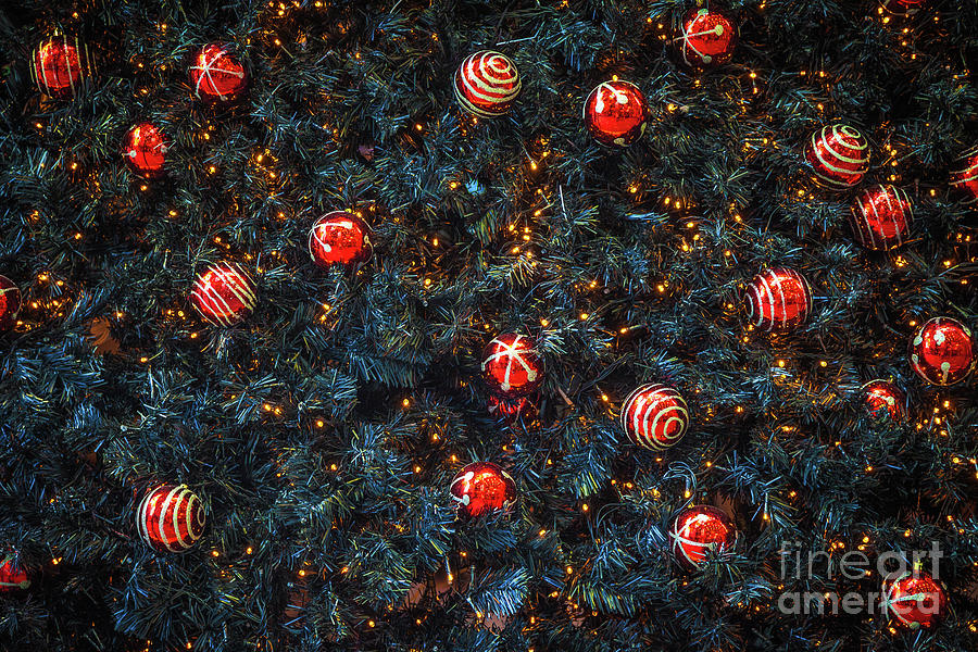 Red Christmas Decorations On Christmas Photograph by Mark Hyland