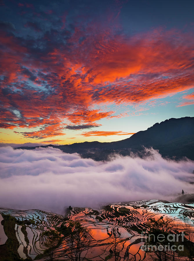 Asia Photograph - Red Dawn At Rice Terraces by Inge Johnsson