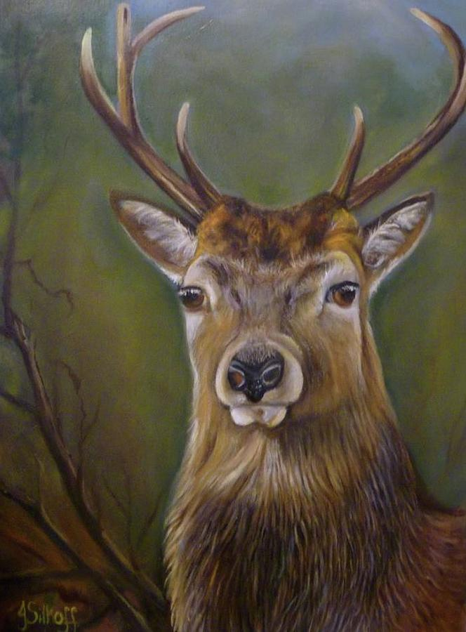Wildlife Painting - Red Deer Stag by Janet Silkoff