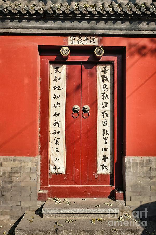 Red Door by Iryna Liveoak
